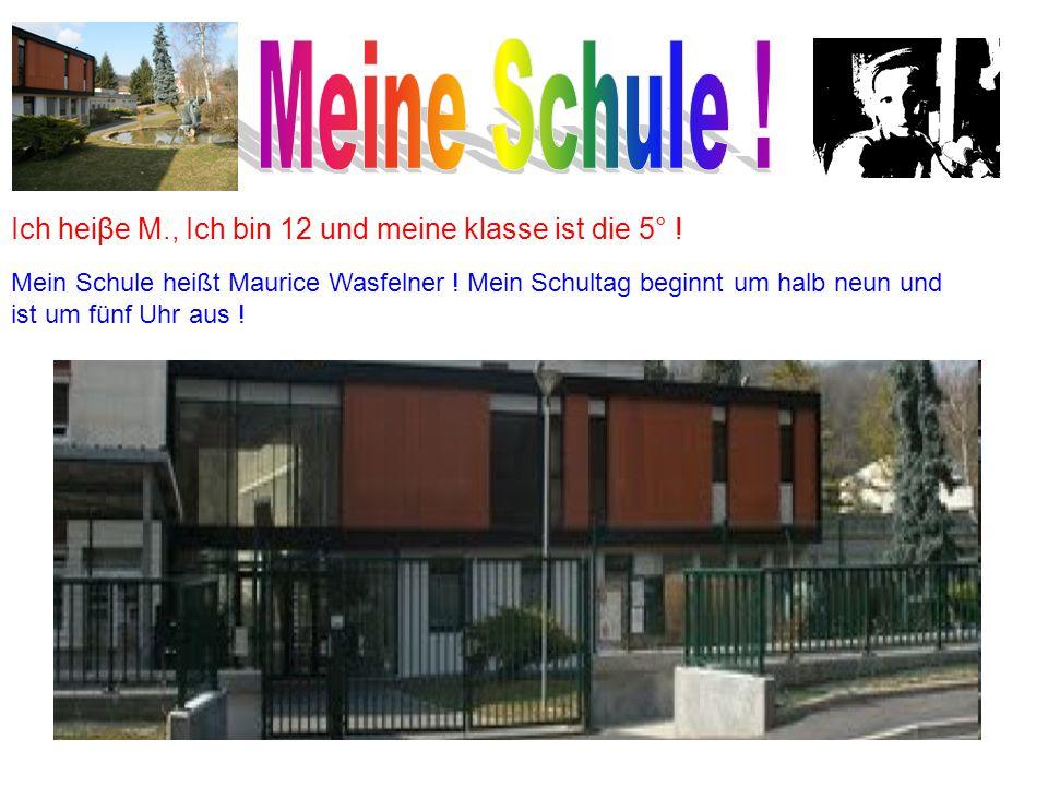 Ich heiβe M., Ich bin 12 und meine klasse ist die 5° ! Mein Schule heißt Maurice Wasfelner ! Mein Schultag beginnt um halb neun und ist um fünf Uhr au
