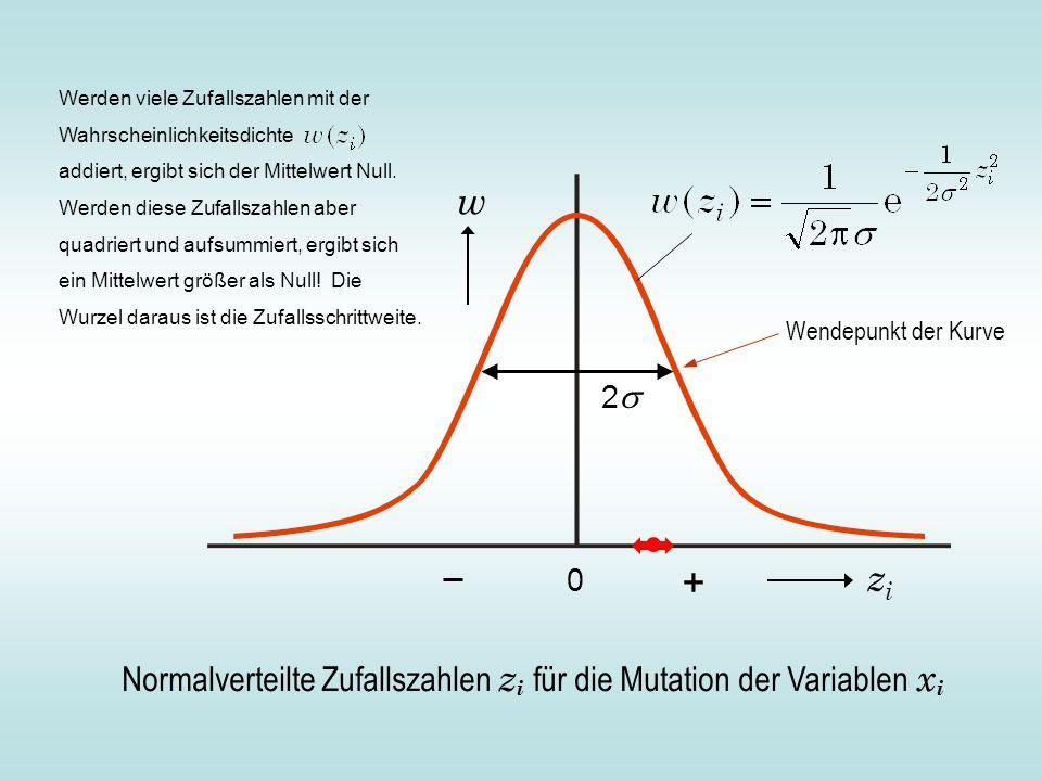 Normalverteilte Zufallszahlen z i für die Mutation der Variablen x i zizi w 0 22 + Wendepunkt der Kurve Werden viele Zufallszahlen mit der Wahrscheinlichkeitsdichte addiert, ergibt sich der Mittelwert Null.
