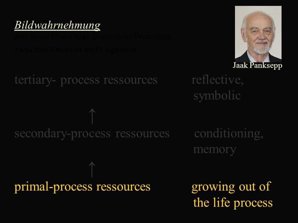 Bildwahrnehmung Auf dieser Ebene enge dynamische Vernetzung zwischen Emotion und Cognition Jaak Panksepp tertiary- process ressources reflective, symbolic ↑ secondary-process ressources conditioning, memory ↑ primal-process ressources growing out of the life process