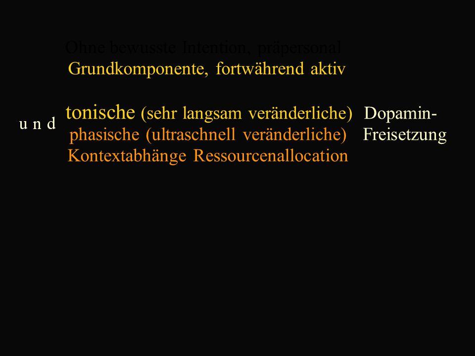 Ohne bewusste Intention, präpersonal Grundkomponente, fortwährend aktiv tonische (sehr langsam veränderliche) Dopamin- phasische (ultraschnell veränderliche) Freisetzung Kontextabhänge Ressourcenallocation
