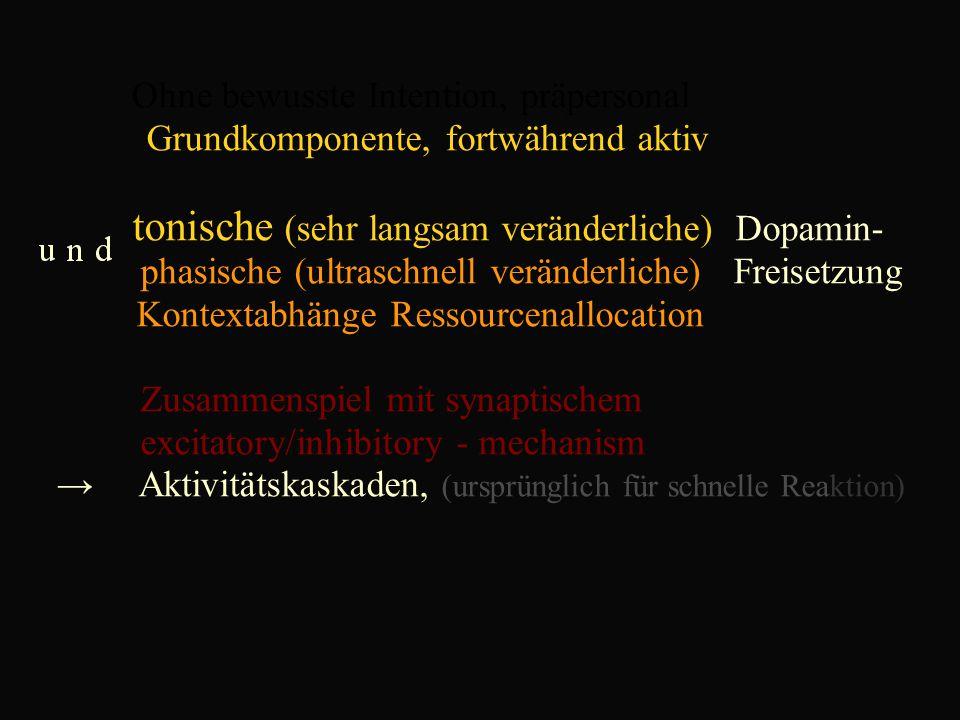 Ohne bewusste Intention, präpersonal Grundkomponente, fortwährend aktiv tonische (sehr langsam veränderliche) Dopamin- phasische (ultraschnell veränderliche) Freisetzung Kontextabhänge Ressourcenallocation Zusammenspiel mit synaptischem excitatory/inhibitory - mechanism → Aktivitätskaskaden, (ursprünglich für schnelle Reaktion)