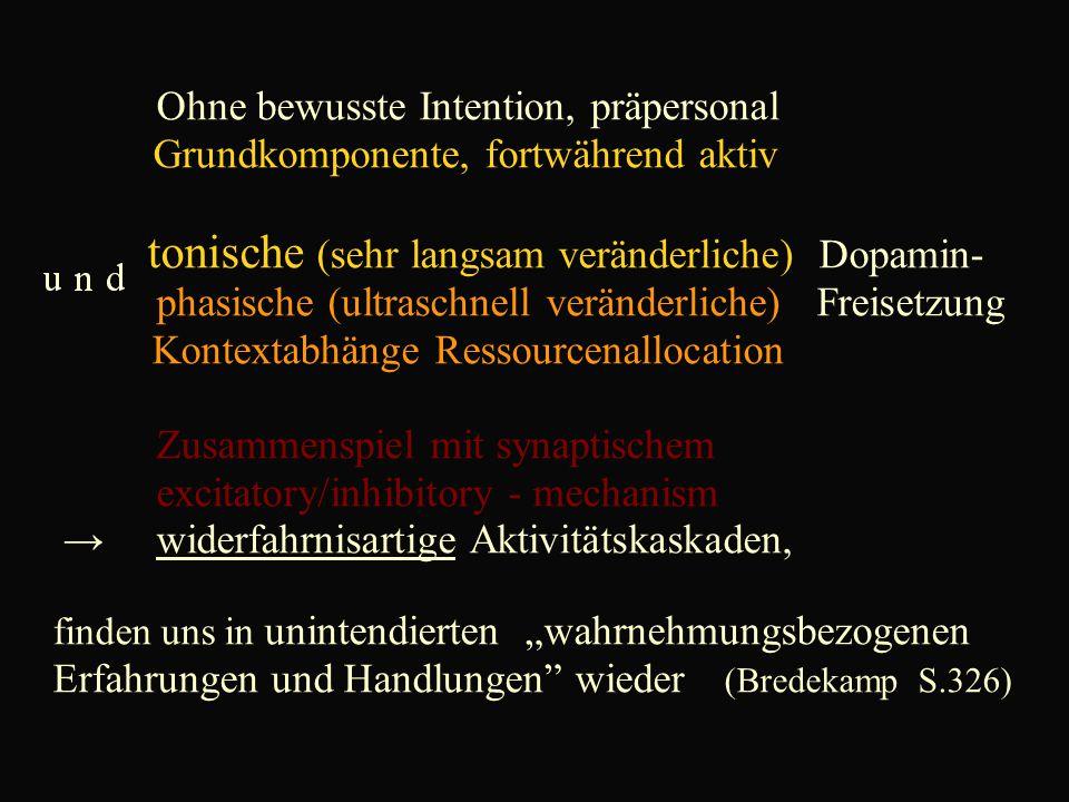 """Ohne bewusste Intention, präpersonal Grundkomponente, fortwährend aktiv tonische (sehr langsam veränderliche) Dopamin- phasische (ultraschnell veränderliche) Freisetzung Kontextabhänge Ressourcenallocation Zusammenspiel mit synaptischem excitatory/inhibitory - mechanism → widerfahrnisartige Aktivitätskaskaden, finden uns in unintendierten """"wahrnehmungsbezogenen Erfahrungen und Handlungen wieder (Bredekamp S.326)"""