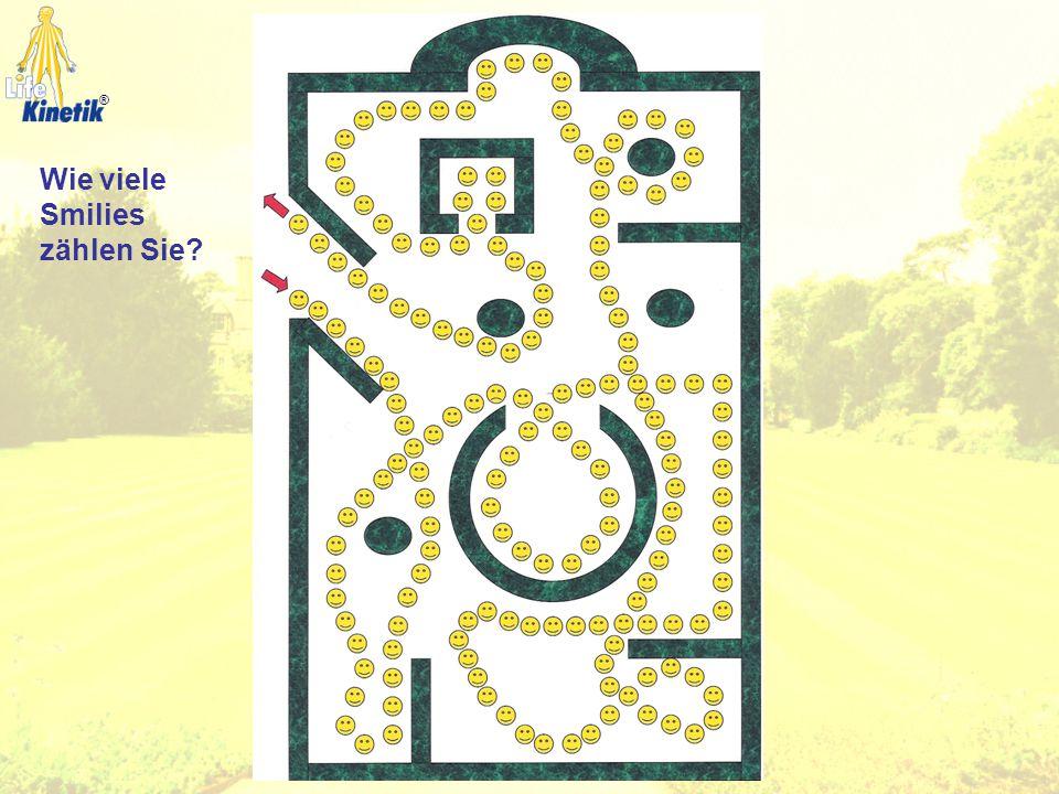 1. Augenstellung Visueller Bereich 2. Augenbewegung 3. Blickfeld 4. Zielblick ®