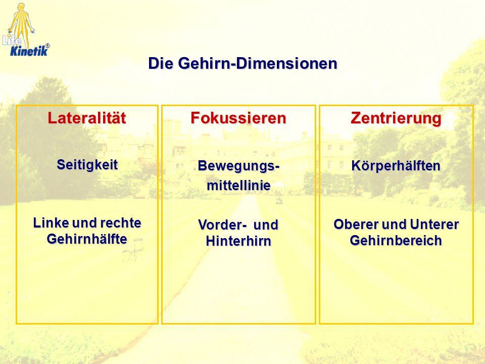 1. Augenstellung Visueller Bereich 2. Augenbewegung 3. Blickfeld 4. Zielblick 5. Augendominanz ®