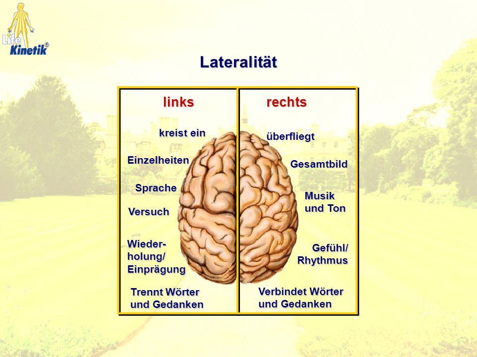 Zentrierung Körperhälften Oberer und Unterer Gehirnbereich Fokussieren Bewegungs- mittellinie Vorder- und Hinterhirn Lateralität Seitigkeit Seitigkeit
