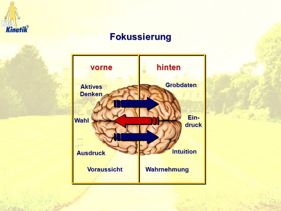 Fokussierung Aktives Denken Voraussicht Ausdruck Wahl Grobdaten Wahrnehmung Ein- druck Intuition vornehinten ®