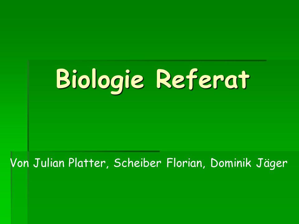 Biologie Referat Von Julian Platter, Scheiber Florian, Dominik Jäger