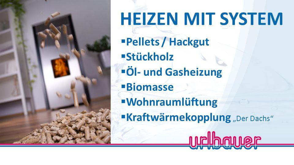 """HEIZEN MIT SYSTEM  Pellets / Hackgut  Stückholz  Öl- und Gasheizung  Biomasse  Wohnraumlüftung  Kraftwärmekopplung """"Der Dachs"""""""