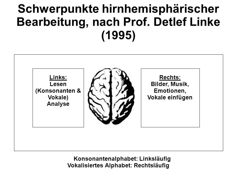 Rechts: Bilder, Musik, Emotionen, Vokale einfügen Links: Lesen (Konsonanten & Vokale) Analyse Schwerpunkte hirnhemisphärischer Bearbeitung, nach Prof.