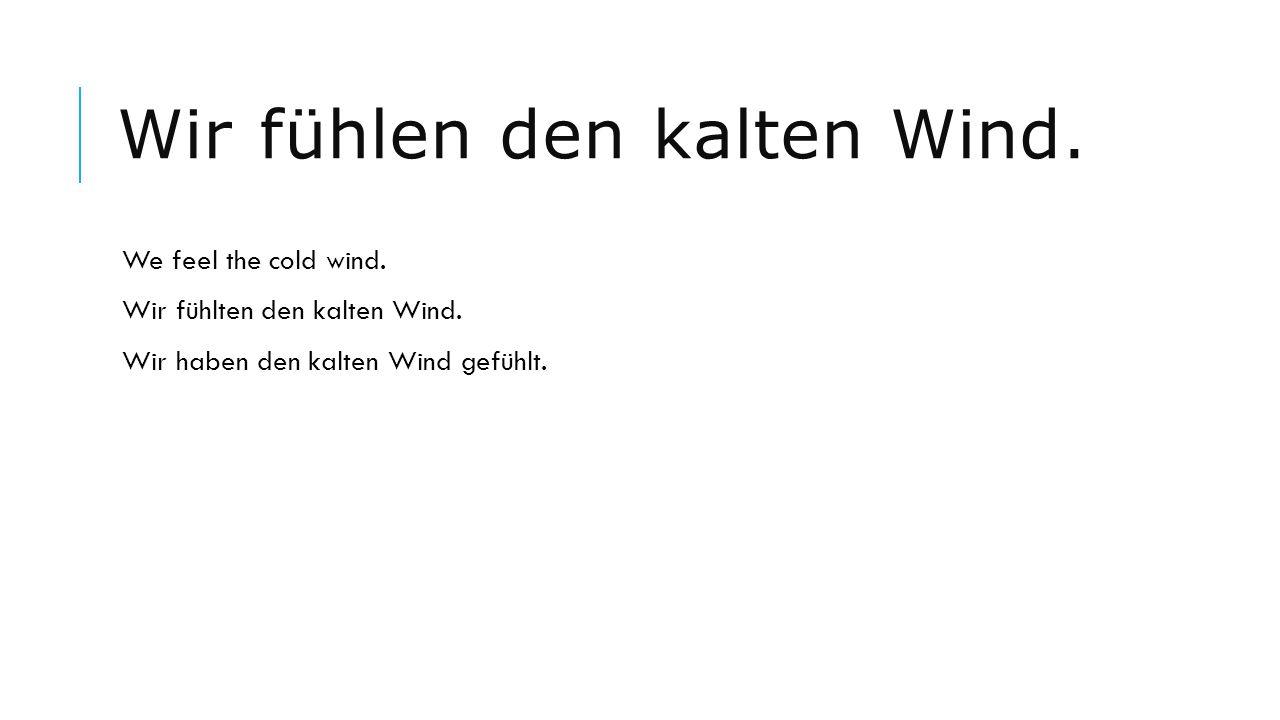 Wir fühlen den kalten Wind. We feel the cold wind. Wir fühlten den kalten Wind. Wir haben den kalten Wind gefühlt.