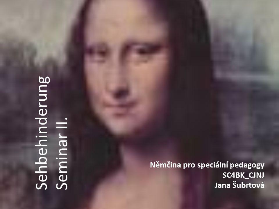 Němčina pro speciální pedagogy SC4BK_CJNJ Jana Šubrtová Sehbehinderung Seminar II.
