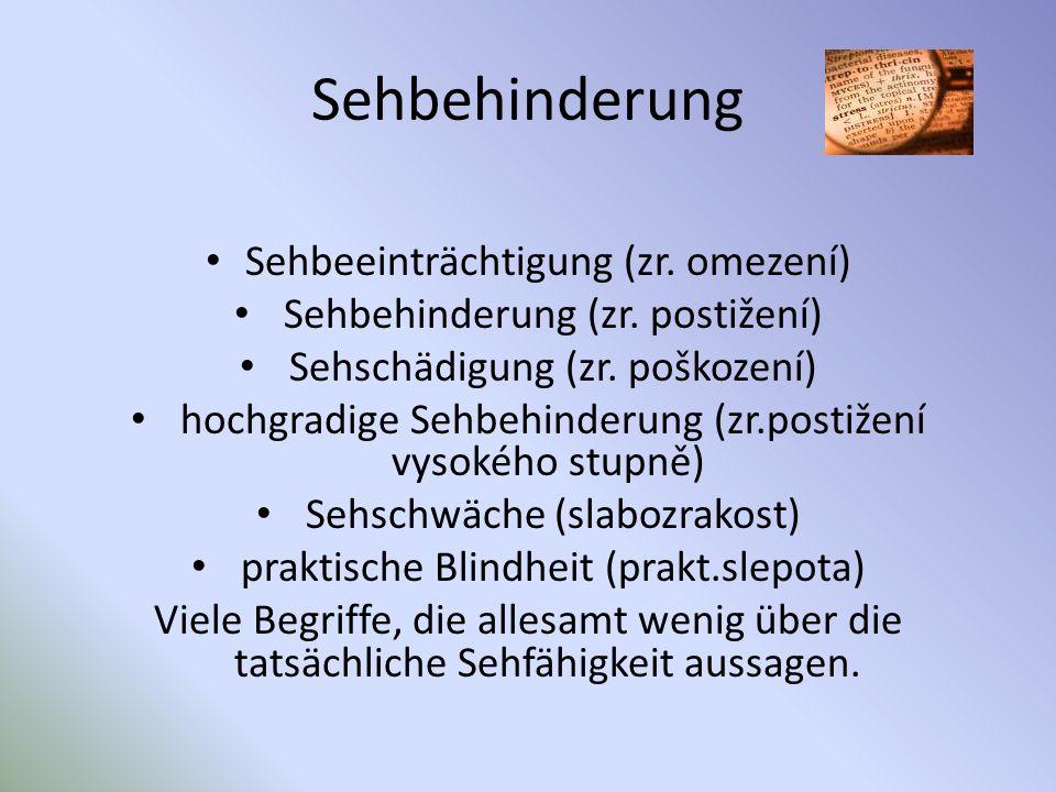 Sehbehinderung Sehbeeinträchtigung (zr. omezení) Sehbehinderung (zr. postižení) Sehschädigung (zr. poškození) hochgradige Sehbehinderung (zr.postižení