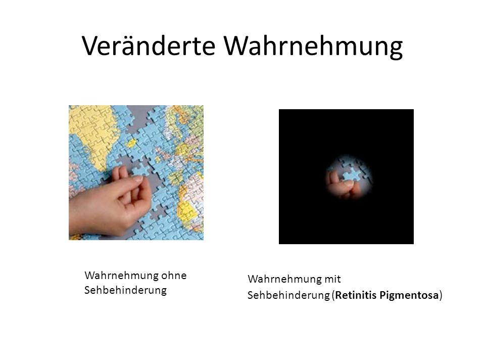 Veränderte Wahrnehmung Wahrnehmung ohne Sehbehinderung Wahrnehmung mit Sehbehinderung (Retinitis Pigmentosa)