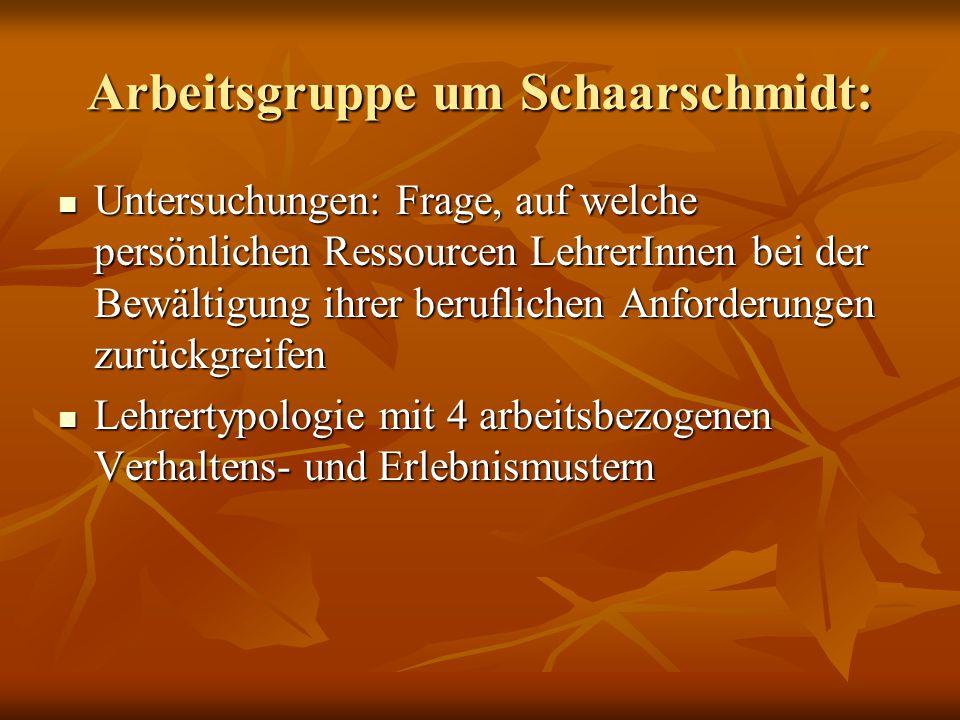 Arbeitsgruppe um Schaarschmidt: Untersuchungen: Frage, auf welche persönlichen Ressourcen LehrerInnen bei der Bewältigung ihrer beruflichen Anforderun