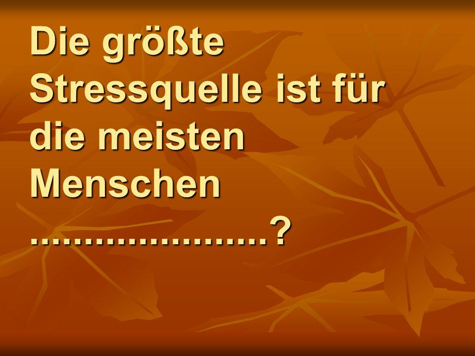 Die größte Stressquelle ist für die meisten Menschen......................?