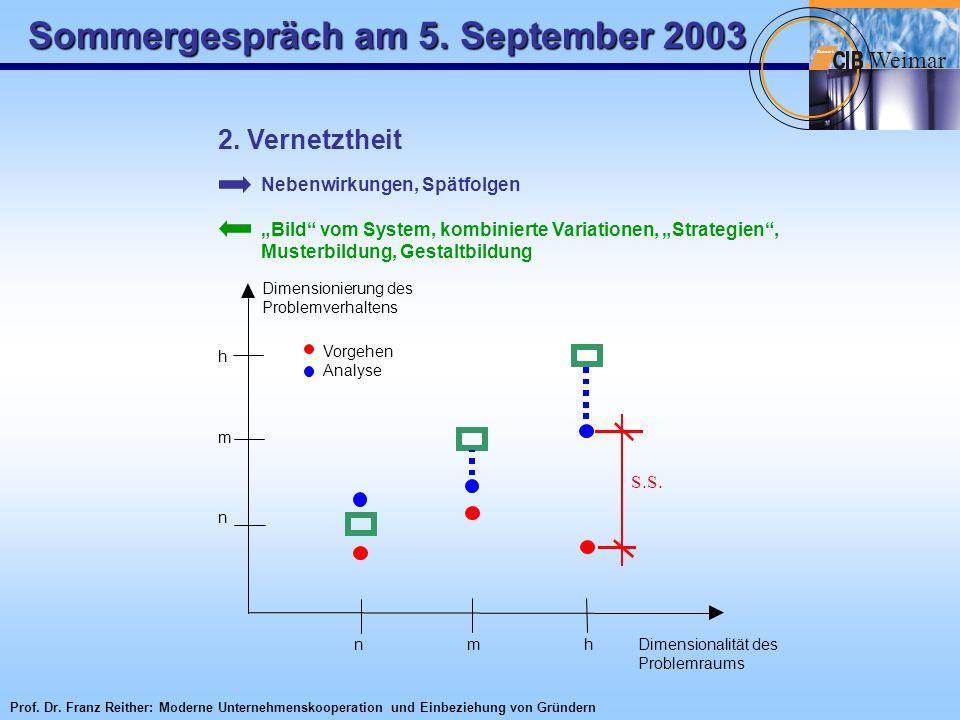 """Sommergespräch am 5. September 2003 W eimar Netzwerk 2. Vernetztheit Nebenwirkungen, Spätfolgen """"Bild"""" vom System, kombinierte Variationen, """"Strategie"""