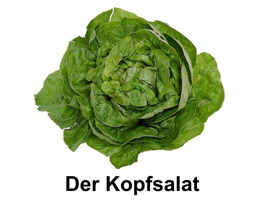 Der Kopfsalat