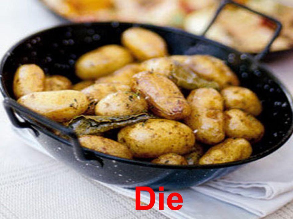Die Salzkartoffel n