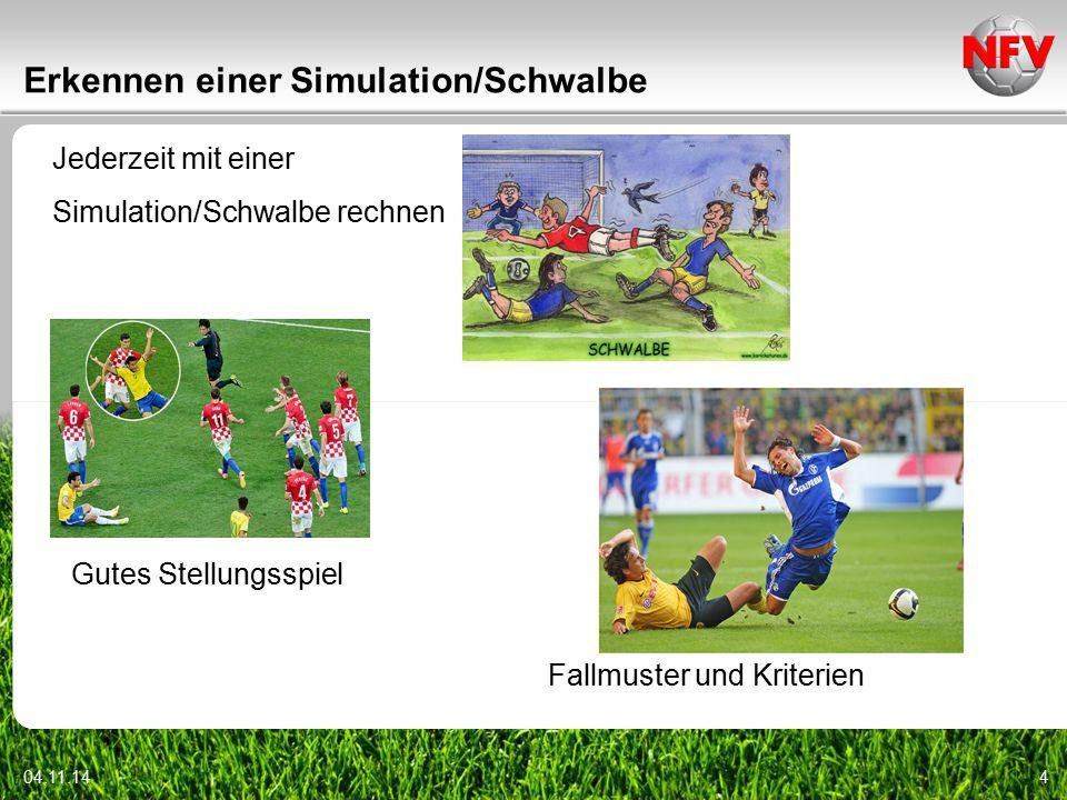 Videoszenen 04.11.145  15 Videoszenen zu Schwalben und anderen Simulationen