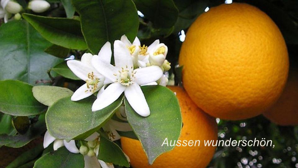 Sei wie eine Frucht: