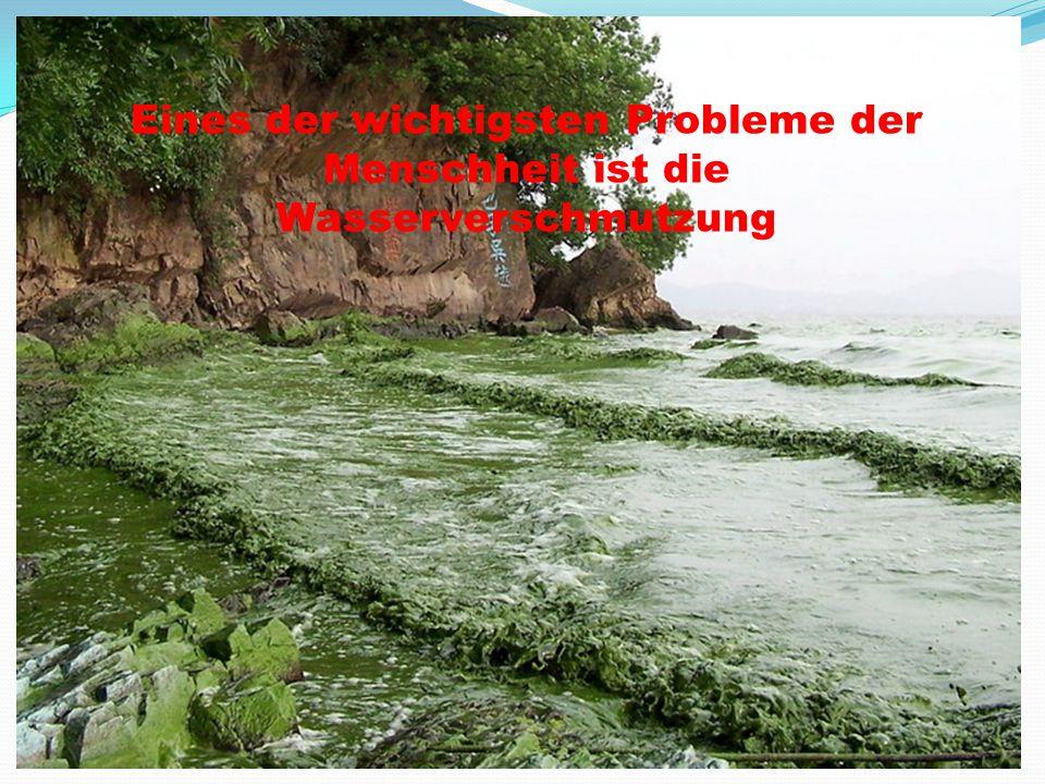 Eines der wichtigsten Probleme der Menschheit ist die Wasserverschmutzung