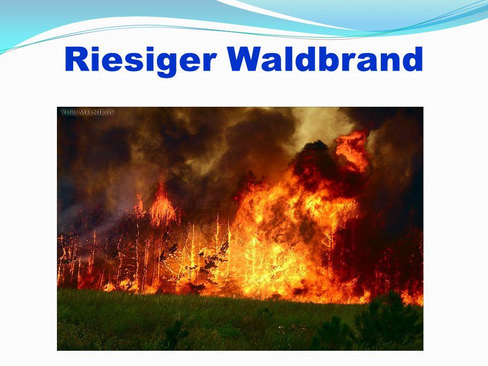 Riesiger Waldbrand