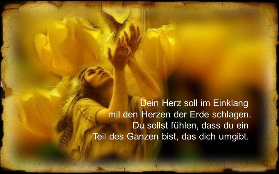 Heilige Mutter Erde, die Bäume und die ganze Natur sind Zeugen deines Denkens und Wirkens.
