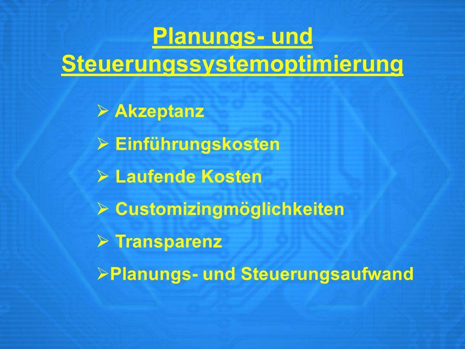  Akzeptanz  Einführungskosten  Laufende Kosten  Customizingmöglichkeiten  Transparenz  Planungs- und Steuerungsaufwand Planungs- und Steuerungss