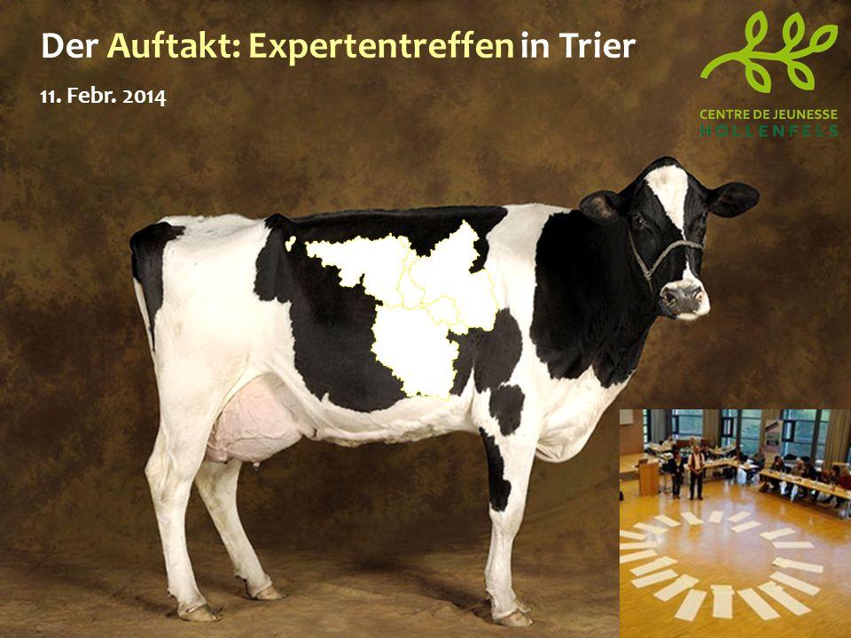 Der Auftakt: Expertentreffen in Trier 11. Febr. 2014