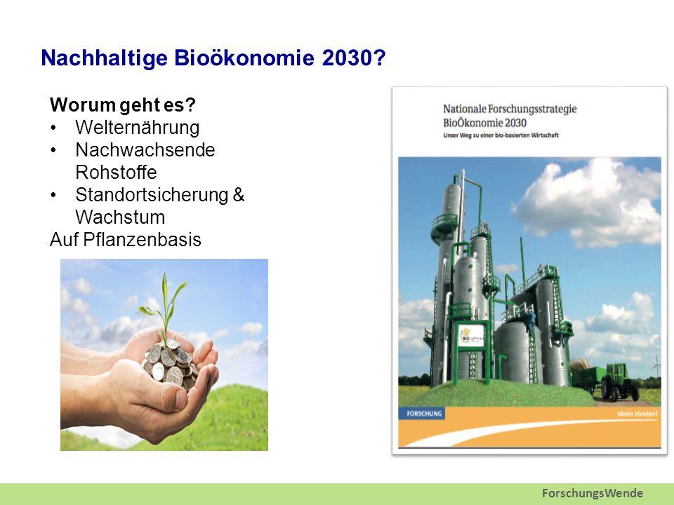 ForschungsWende Nachhaltige Bioökonomie 2030. Worum geht es.