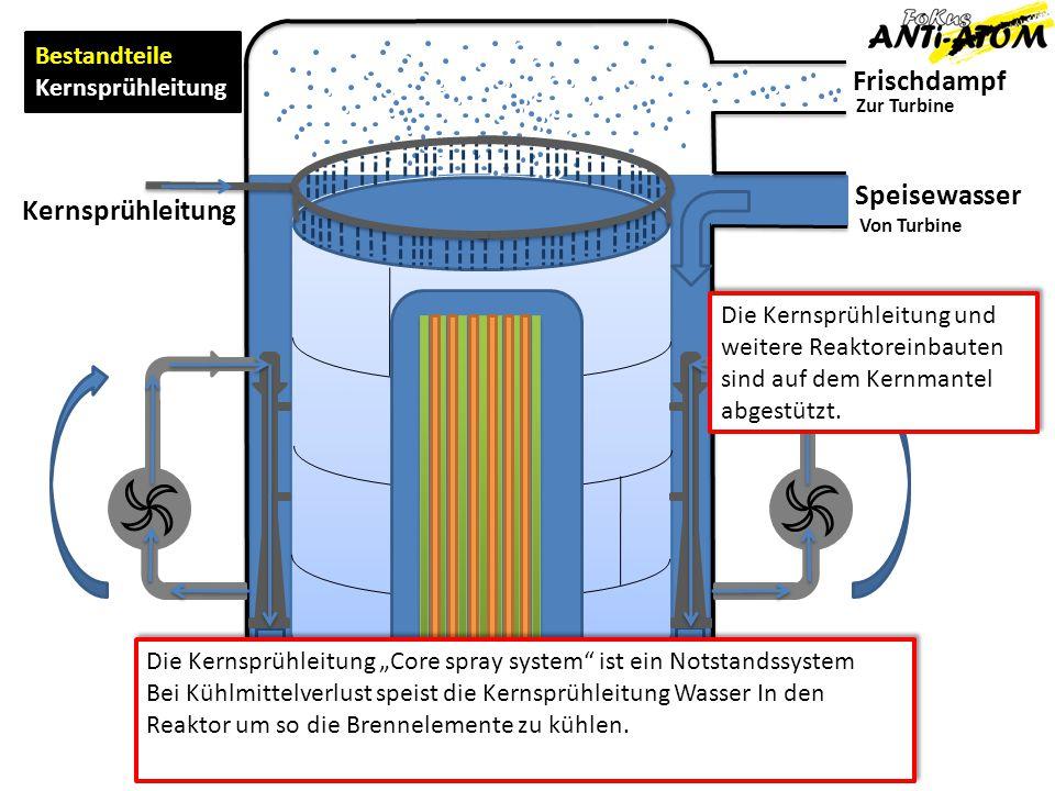 Frischdampf Speisewasser Zur Turbine Von Turbine Bestandteile Umwälzschlaufe Kernsprühleitung Die Umwälzschlaufe, fördert das Speisewasser aus dem Raum zwischen Reaktorwand und Kernmantel mittels Strahlpumpe und aussenliegender Umwälzpumpe in den unteren durch die Kernmantel- Tragkonstruktion in den unteren Reaktorraum und von unten durch die Brennelemente.