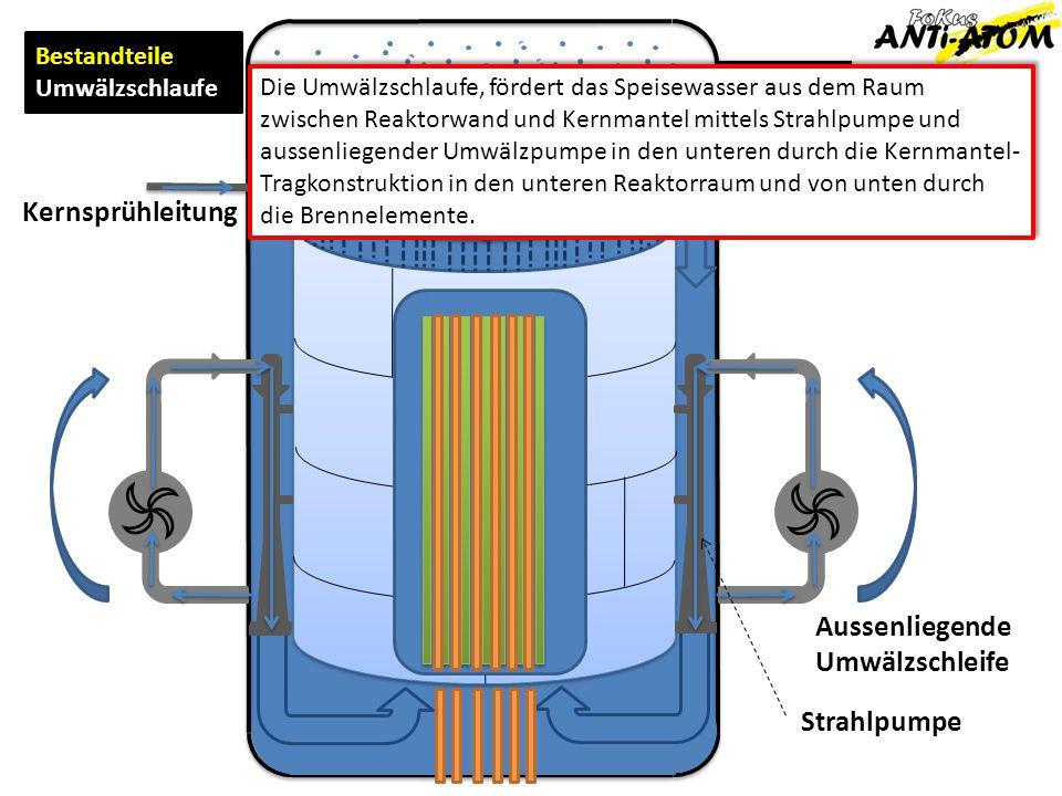 Frischdampf Speisewasser Zur Turbine Von Turbine Bestandteile Umwälzschlaufe Kernsprühleitung Die Umwälzschlaufe, fördert das Speisewasser aus dem Rau