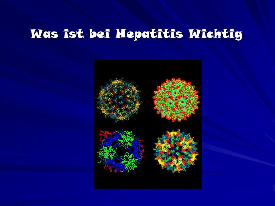 Was ist bei Hepatitis Wichtig