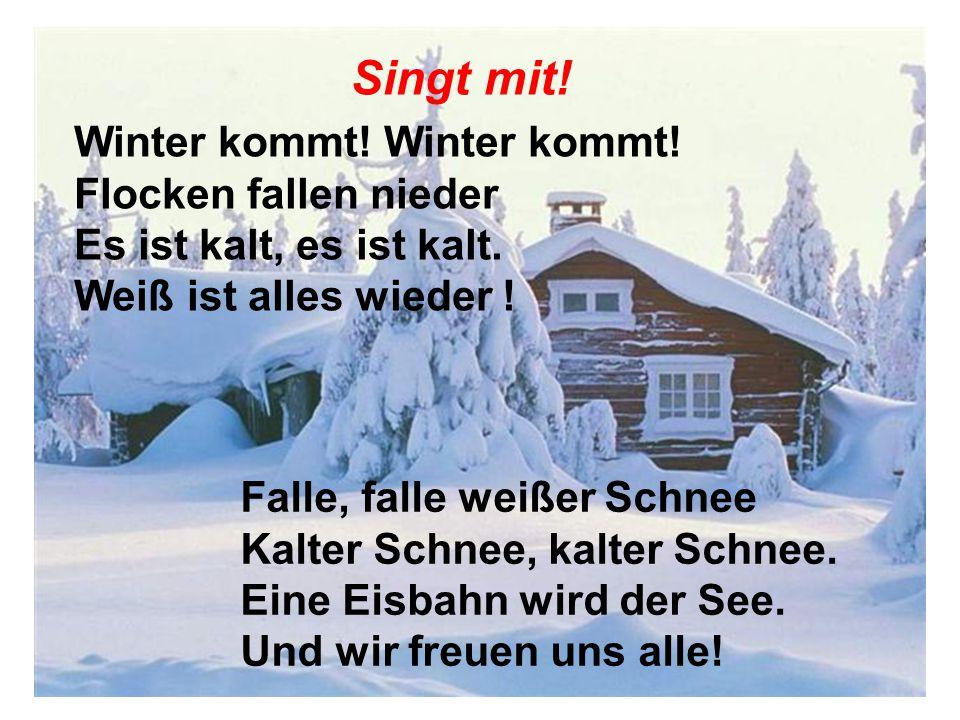 Singt mit! Winter kommt! Winter kommt! Flocken fallen nieder Es ist kalt, es ist kalt. Weiß ist alles wieder ! Falle, falle weißer Schnee Kalter Schne