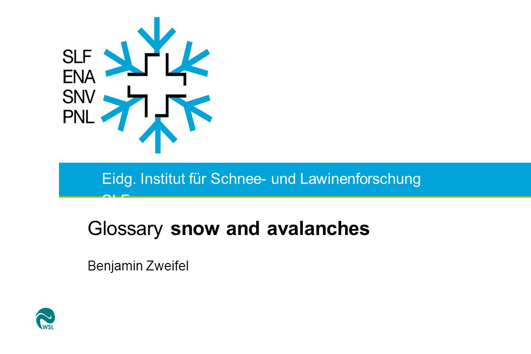 Glossary snow and avalanches Idea:  help for users  consistent terminology for experts