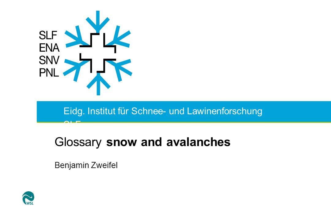 Eidg. Institut für Schnee- und Lawinenforschung SLF Glossary snow and avalanches Benjamin Zweifel