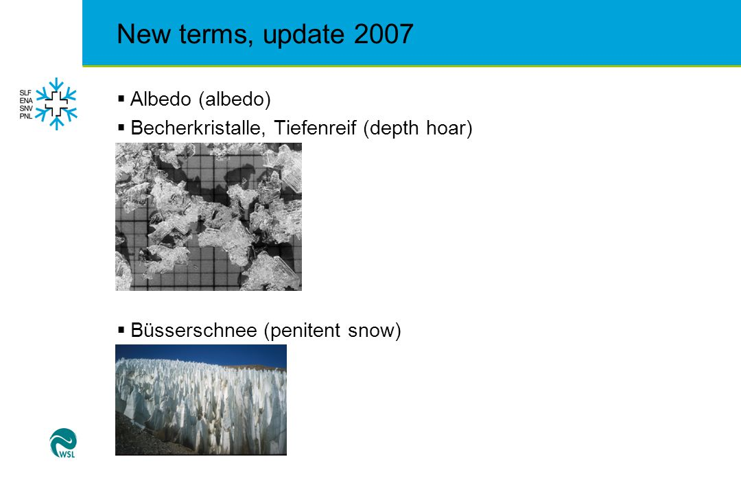 New terms, update 2007  Eislawine (ice avalanche)  Entlastungsabstand (distance between skiers to reduce pressure on the snow)  Fernauslösung (distant release)