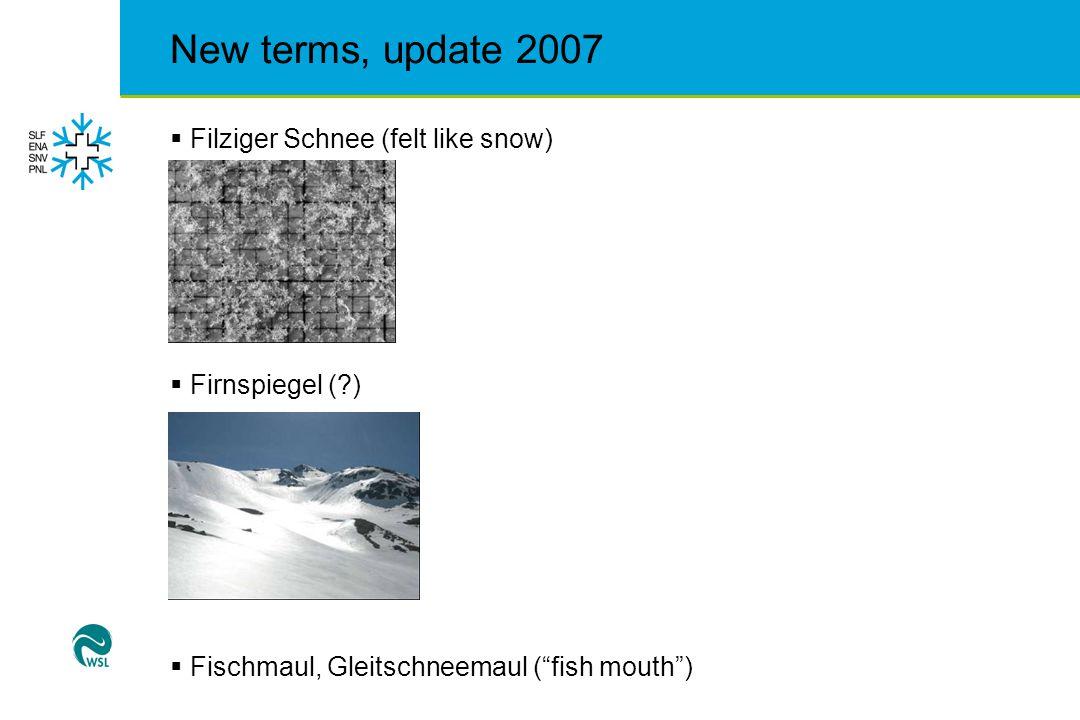 New terms, update 2007  gebundener Schnee (bonded snow)  inneralpin (interior alps, maybe specifically CH…)  Isothermie, isotherme Schneedecke (isothermal snowpack)  Kantigkörniger Schnee (facet snow)