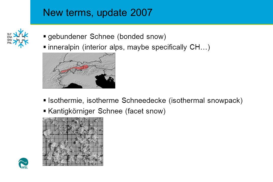 New terms, update 2007  kleine, runde Körner, Rundkörniger Schnee (round grained snow)  Kritische Neuschneemenge (critical amount of new snow)  Lawinenkegel (avalanche cone, runout)  Lawinenlagebericht, Lawinenbulletin (CH)  lokal (local)
