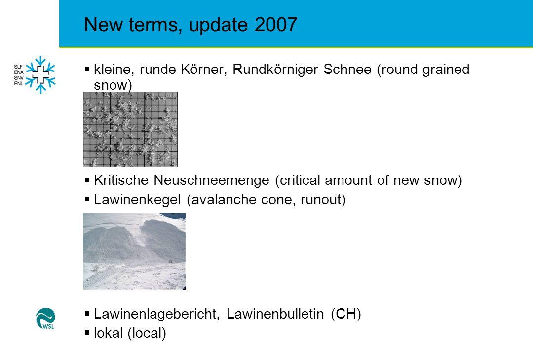 New terms, update 2007  regional (regional)  Schmelzformen  Schneedichte  Schneedünen, Dünen, Windablagerung (snow dunes)
