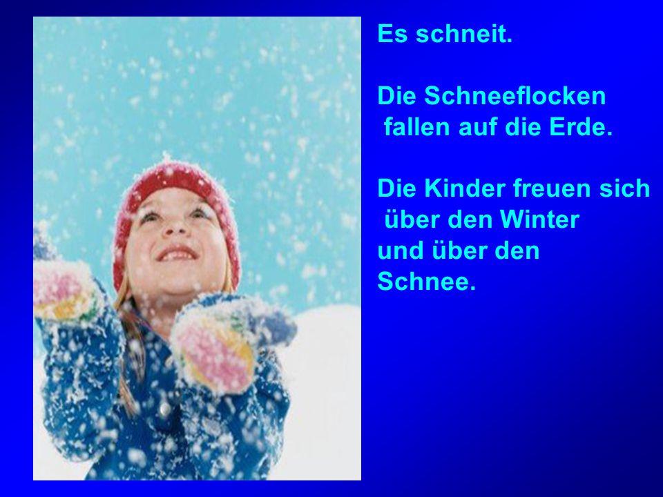 Es schneit. Die Schneeflocken fallen auf die Erde. Die Kinder freuen sich über den Winter und über den Schnee.