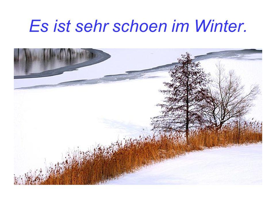 Es ist sehr schoen im Winter.