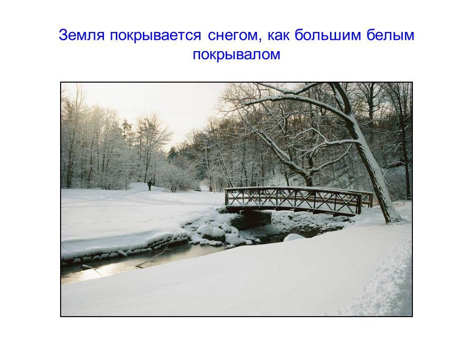 Земля покрывается снегом, как большим белым покрывалом
