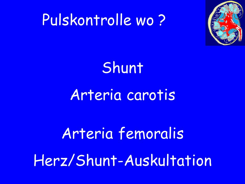 Pulskontrolle wo ? Shunt Arteria carotis Herz/Shunt-Auskultation Arteria femoralis