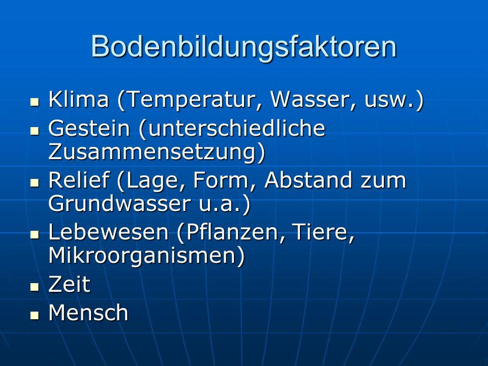 Bodenbildungsfaktoren Klima (Temperatur, Wasser, usw.) Klima (Temperatur, Wasser, usw.) Gestein (unterschiedliche Zusammensetzung) Gestein (unterschie