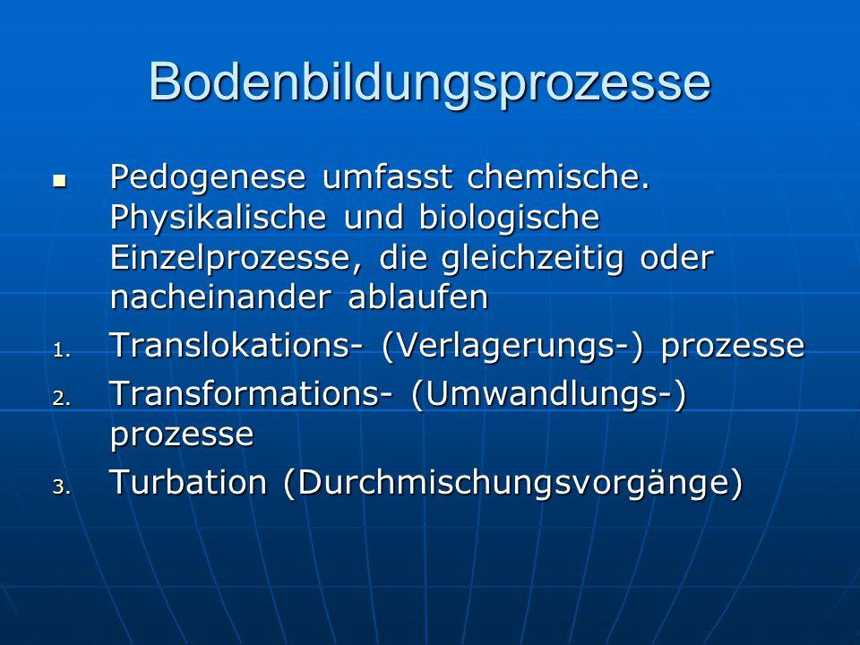 Bodenbildungsprozesse Pedogenese umfasst chemische. Physikalische und biologische Einzelprozesse, die gleichzeitig oder nacheinander ablaufen Pedogene