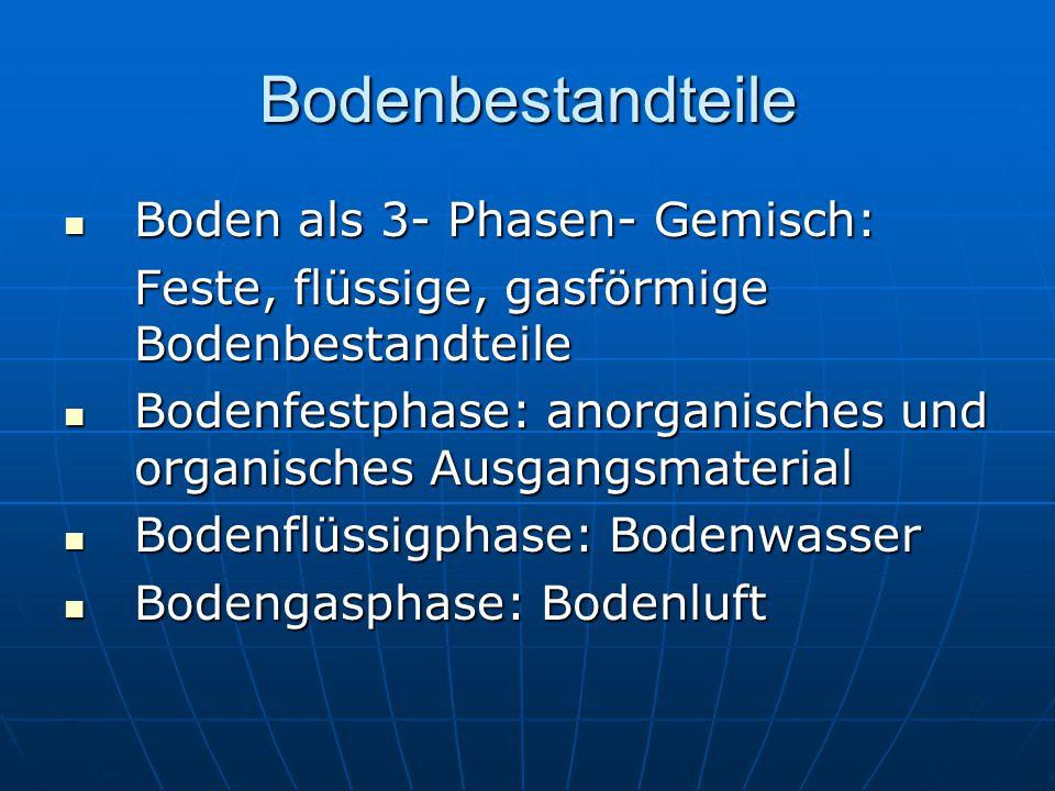 Bodenbestandteile Boden als 3- Phasen- Gemisch: Boden als 3- Phasen- Gemisch: Feste, flüssige, gasförmige Bodenbestandteile Bodenfestphase: anorganisc