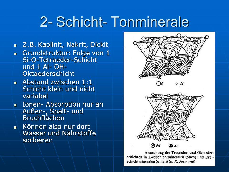 2- Schicht- Tonminerale Z.B. Kaolinit, Nakrit, Dickit Z.B. Kaolinit, Nakrit, Dickit Grundstruktur: Folge von 1 Si-O-Tetraeder-Schicht und 1 Al- OH- Ok