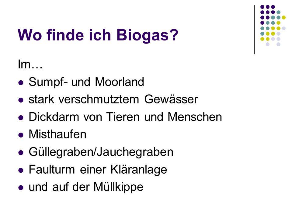 Wo finde ich Biogas? Im… Sumpf- und Moorland stark verschmutztem Gewässer Dickdarm von Tieren und Menschen Misthaufen Güllegraben/Jauchegraben Faultur