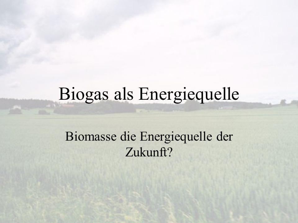 Biogas als Energiequelle Biomasse die Energiequelle der Zukunft?